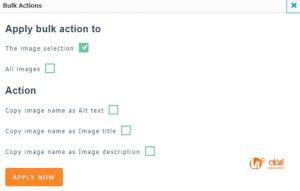 تنظیمات متن جایگزین و alt تصاویر