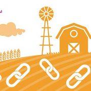 مزرعه لینک (Link farm)